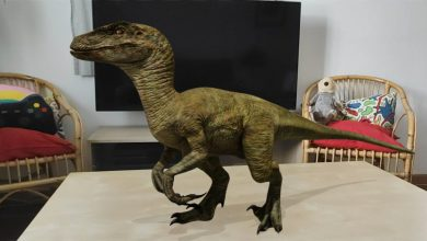 Photo of Google permite ver dinosaurios en realidad aumentada