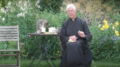 Photo of Gato interrumpe transmisión de sacerdote para robar leche y se vuelve viral