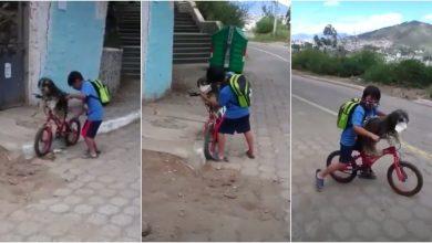 Photo of Niño le pone cubrebocas a su perro para ir a la tienda