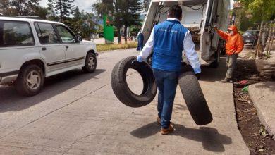 Photo of Colectan tres toneladas de llantas en Jornada de Descacharrización