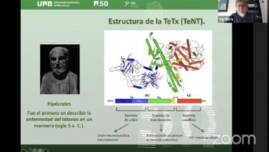 Photo of Científicos trabajan en derivados de toxinas tetánicas para tratar la depresión