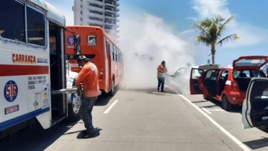 Photo of Desinfectan más de 48 mil unidades de transporte
