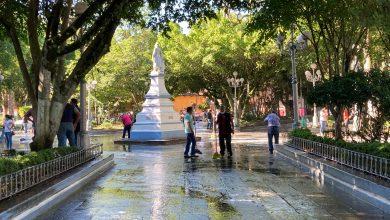Photo of Buscan impulsar ruta de la orquídea para atraer turismo a Coatepec