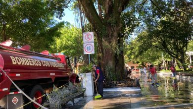 Photo of Limpian parque de Coatepec; prevén reapertura para el próximo martes