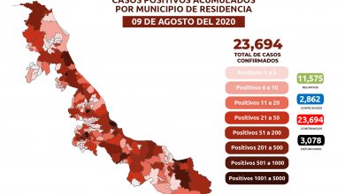 Photo of Xalapa suma 1360 casos de coronavirus; Magdalena se suma al conteo