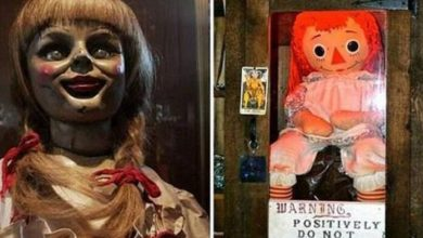 Photo of Anabelle, la misteriosa muñeca embrujada, ¿escapó del museo de los Warren?