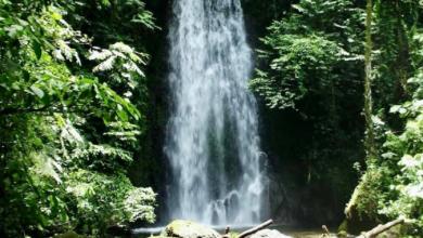 Photo of Peligra abasto de agua en Coatepec por invasión en reserva ecológica