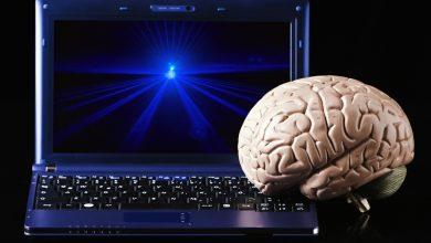 Photo of Elon Musk está listo para conectar tu cerebro con una computadora
