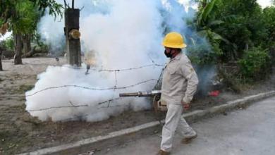Photo of Fumigaciones y descacharrización, acciones de Salud contra el dengue