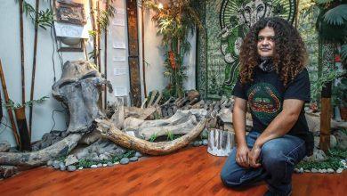 Photo of Familia mexicana halló un mamut en su jardín, ¡ahora lo tienen en su sala!