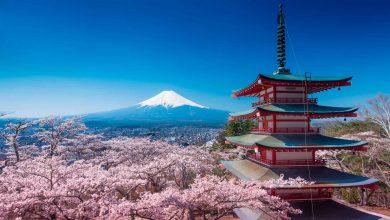 Photo of Japón te dice cómo derrotar al Covid-19 sin cuarentena
