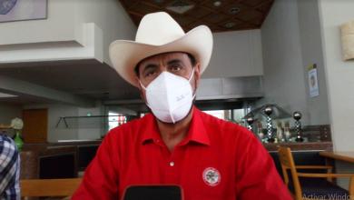 Photo of Con apoyos necesarios Veracruz puede retomar liderazgo productivo en el país: CNC