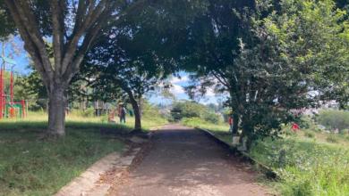 Photo of Prohíben acceso al parque La Loma en Veracruz; planean construir un cuartel de GN