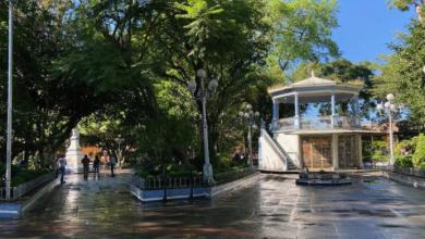 Photo of Deberán garantizar medidas sanitarias en reapertura de parque de Coatepec