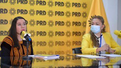Photo of Mujeres perredistas tramitan amparo para designar a titular del IVM