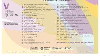 Photo of Presenta IVEC resultados de la V Bienal de Arte Veracruz 2020