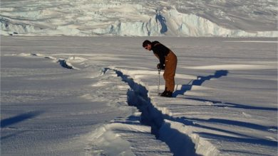 Photo of Calentamiento global a punto de fracturar la Antártida
