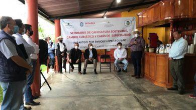 Photo of Imparten SEDARPA y Agroclúster de Oaxaca seminario de cafeticultura sustentable