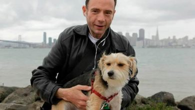 Photo of Primer hombre curado de VIH muere de cáncer en EU