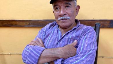 Photo of Denuncian robo en cafetales de región Coatepec