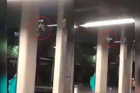 Photo of Graban supuesta araña gigante en el metro de la Ciudad de México #Video