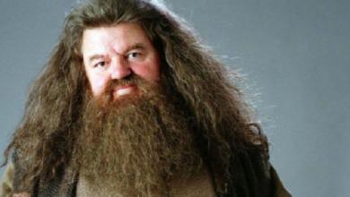 Photo of Intérprete de Hagrid en 'Harry Potter' defiende a J. K. Rowling
