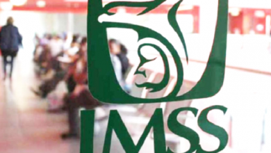 Photo of IMSS será implacable ante robo de vacunas contra la Influenza estacional