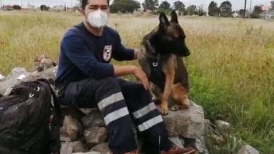 "Photo of Daniel fue entrenador de ""Luna"", perrita de rescate del 19-S"