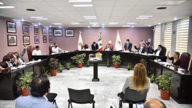 Photo of PVEM en Veracruz ratifica deseo de ir con Morena y PT en siguientes elecciones