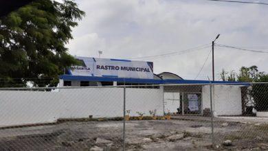 Photo of A 3 meses sin operar el rastro en Misantla, Procuraduría de Medio Ambiente no da resolutivo