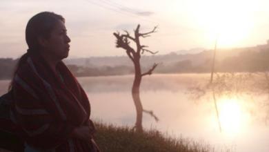 Photo of «Sin Señas Particulares» un filme que «bebe de la realidad»