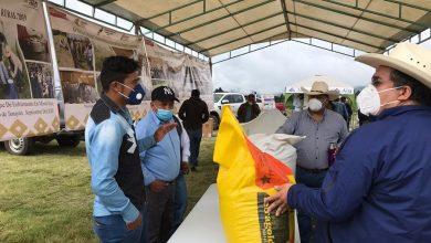 Photo of Entrega SEDARPA apoyos por 14 mdp a productores de cuenca lechera, en la región central