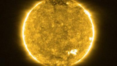 Photo of El sol inició un nuevo ciclo, aquí te explicamos qué significa