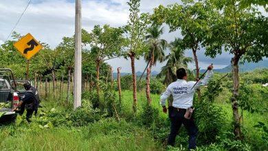 Photo of La dirección de Tránsito da mantenimiento y limpieza de señalética en Misantla
