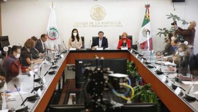 Photo of Tras comparecencia de Rosario Piedra, chocan senadoras por remoción del cargo