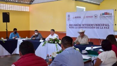 Photo of Respaldan alcaldes de 12 municipios acciones de SSP