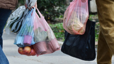 Photo of Canadá dirá adiós a las bolsas de plástico en 2021