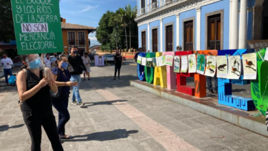 Photo of Cuelgan pancartas sobre Palacio de Coatepec en defensa del bosque