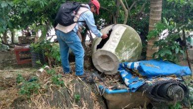 Photo of Se han eliminado más de dos millones de huevecillos del dengue