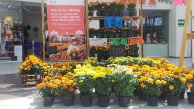 Photo of Inicia venta de flor de cempasúchil en Supermercados de la CDMX