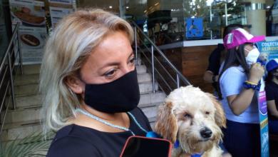 Photo of Persiste abandono de mascotas por la contingencia sanitaria