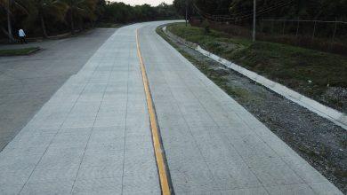 Photo of Inaugura Gobernador acceso al Aeropuerto Tajín, en Poza Rica