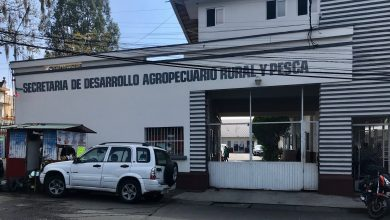 Photo of Recupera Sedarpa dos bodegas en Central de Abastos de CDMX