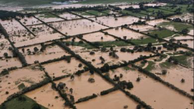 Photo of Más de 50 muertos en Guatemala por el paso del ciclón «Eta»