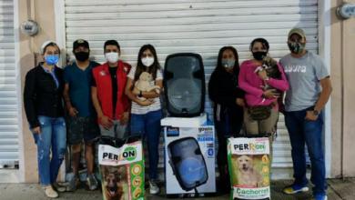 Photo of CNOP apoya a refugio de mascotas de compañía