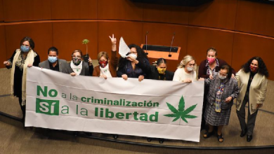 Photo of Histórico: Senado aprueba la regulación integral de la marihuana