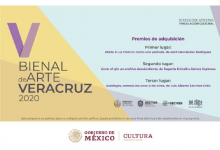 Photo of IVEC da a conocer a las y los ganadores de la V Bienal de Arte Veracruz 2020