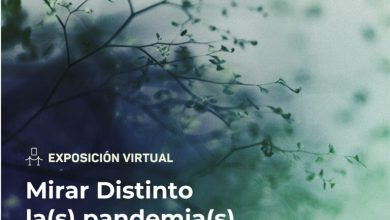 Photo of Invitan a la exposición virtual Mirar Distinto La(s) Pandemia(s)