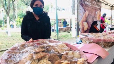 Photo of Comercializan agricultores 49.5 toneladas de productos, mediante jornadas de Consumo Solidario