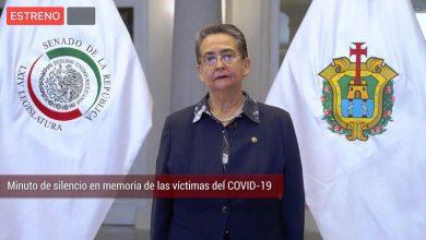 Photo of Senadora Gloria Sánchez, ejemplo  de colaboración en favor de la gente